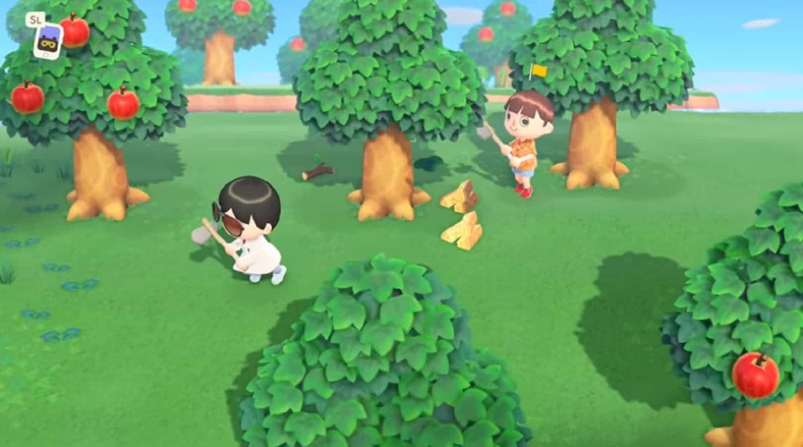 Animal Crossing New Horizons activities